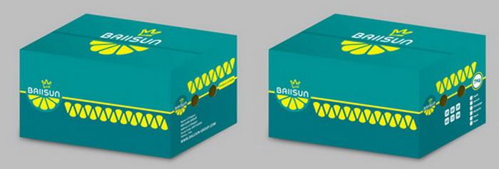 Packaging17